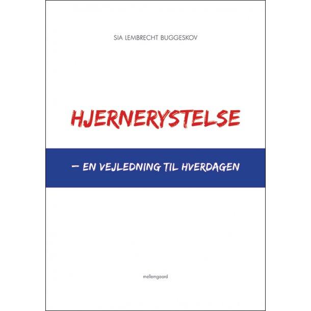 HJERNERYSTELSE - EN VEJLEDNING TIL HVERDAGEN