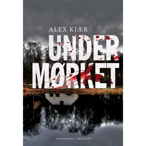 UNDER MØRKET - E-bog