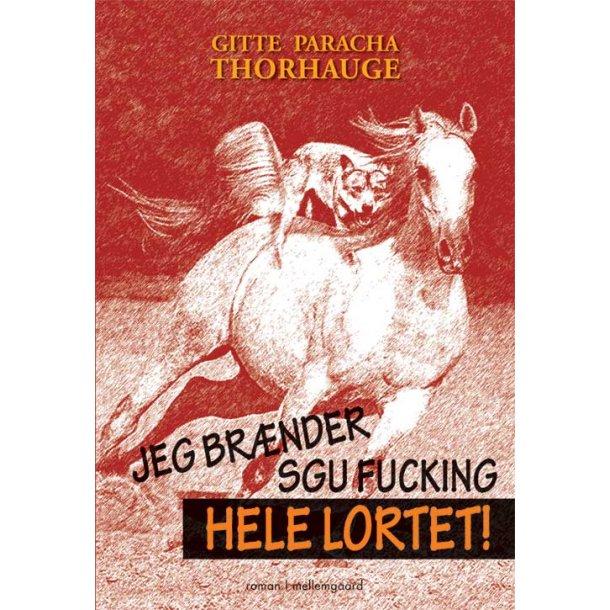 JEG BRÆNDER SGU FUCKING HELE LORTET E-bog